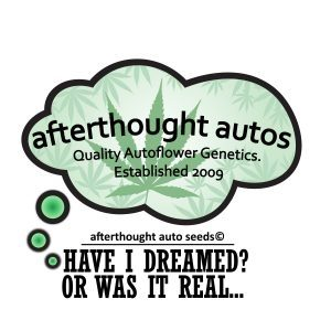 After Thought Auto